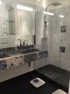 Bathroom with shower and two sink