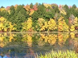Berkshires Waterfront Lakehouse Sanctuary, Lanesboro