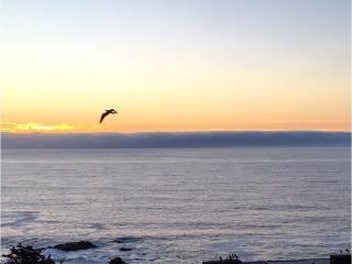 MARAVILLOSA VISTA AL MAR !! Depto.Nuevo. 2D/2B, Viña del Mar
