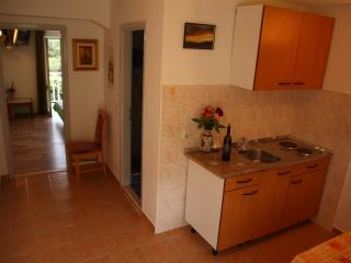 Apartments Villa Ana - One Bedroom Apartment with Balcony and Sea View - Apartment 2, Orebic