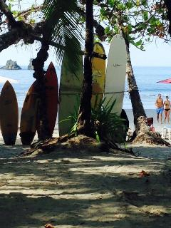 Want to learn how to surf? We can help you with that!!