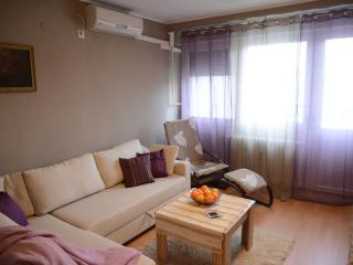 Apartman BUGA center of Osijek