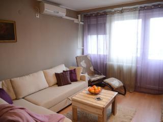Apartman BUGA center of Osijek