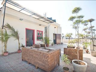 Safe/Easy Terrace Studio in Centre, New Delhi