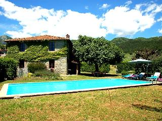 House with private pool/garden 500m from village, Villa Collemandina