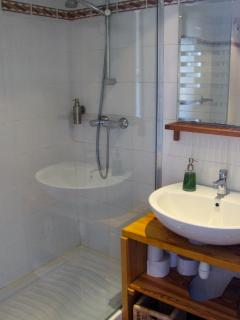 Room Elisette - en-suite shower room with toilettes