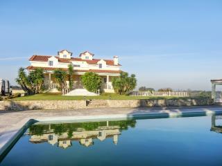 Gorgeous villa with swimming pool, Palmela