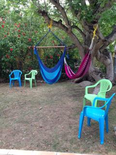 Front yard with hammock and hammock chair for relaxing.