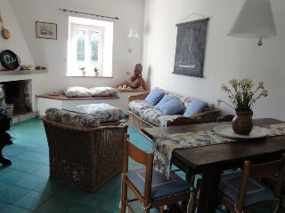 LA CIABATTA two house property 250m from the beach. Air conditioned.
