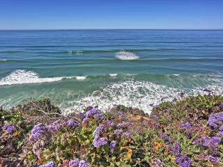 New Listing! Gorgeous 2BR Encinitas Home w/Wifi, Private, 3 Fireplaces & Panoramic Ocean Views! Walk to Shops, Restaurants, Magnificent Beaches & More!