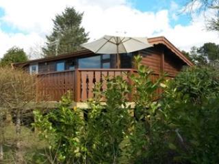 Holday Cabin for Rent, Trawsfynydd
