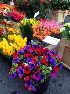 Flowers at the Saturday market are spectacular in all seasons. (CR. M. Terry)