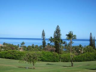 Kaanapali Golf Course condo w/huge ocean views