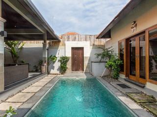 Villa Mardi Seminyak Bali $100 per night