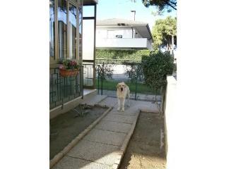 Villa Giorgia - A1 - 70446, Bibione