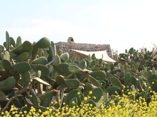 300Years Old Pajara/Trullo 2km from the Sea, Castro
