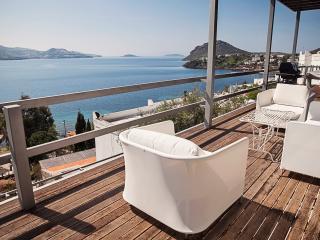 Breathtaking Delightful Villa