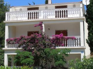 Villa 250m from Beach, Orebic near Korcula