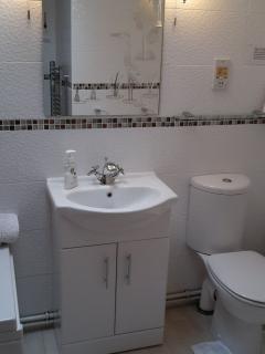 Wash hand basin and WC