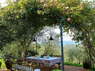 The wine and roses cottage in the Italian Riviera, Sarzana