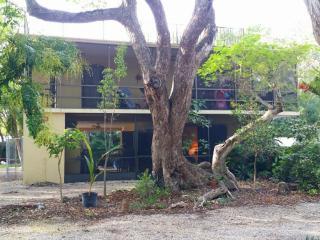 Coconut Palm Paradise, 1 brm, 1st floor, Key Largo