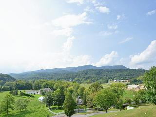 (Bear Rehab) Luxury, Location, and Great Prices, Sevierville