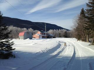 Private Acreage in the Beautiful Humber Valley