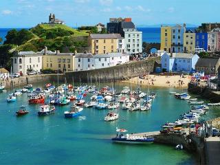 Island View Cabin Tenby - Romantic Cabin for Two - 15 minutes walk to harbour
