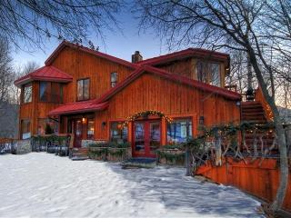 Rustic Elegance! Views! Walk to Resort. Sleeps 10
