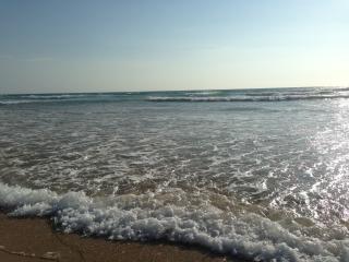Beach, Golf and Blue Studio