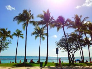 Beautiful Downtown Waikiki Condo by Beach!
