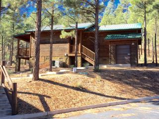 HILLSIDE HIDEAWAY WITH A VIEW OF THE PINES/NEAR HIKING/BIKING/LAKES AND MORE!