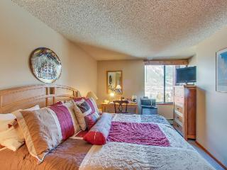 Mountain-view escape close to lifts w/ shared hot tub, sauna, pool, Copper Mountain