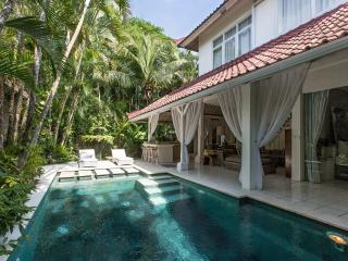 A Fusion of Elegant Villa Close Seminyak
