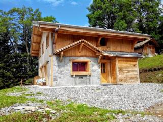 Large Panoramic Chalet (140m²) over Morzine, Avoriaz