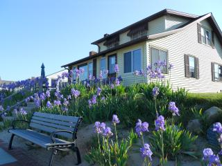Cornfield Point Beachfront Cottage, Old Saybrook