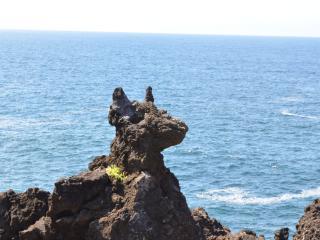 OCEAN - Casa do Cachorro, Madalena