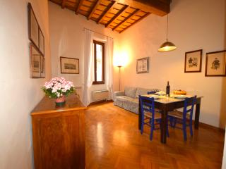VIGNA, an elegant apartment near Dome, Florencia
