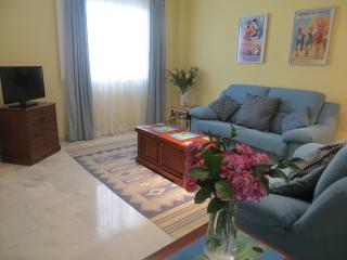 Light and airy lounge with TV, DVD, WIFI, Air conditioning radiator