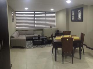 Suite Amoblada Bellini II / Puerto Santa Ana