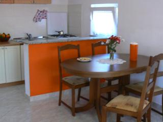 Apartment Ana 1 in Zaton
