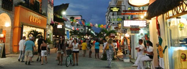 Enjoy the Quinta Avenida, the place to shop, dine and walk.
