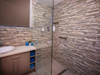 Modern walk in shower.2 Shower heads - Adult and Child level!!!