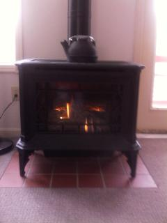 Gas fireplace for winter warmth