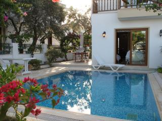 Lovely Villa with Private Pool (Very Central), Datca