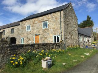 Pen y Parc Holiday Accommodation - Stabal Twm, Mold