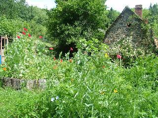 Les Loriots Beaulieu-sur-Dordogne
