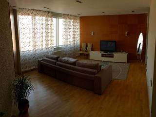 1 Bedroom Apartment at Nurly Tau 5A