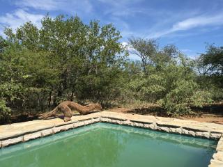 Giraffe Lodge, holiday home near Kruger Park