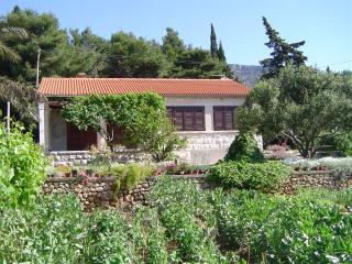 Villa Alma, Bol